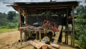 Ataques paramilitares: más de 100 familias desplazadas en el Chocó